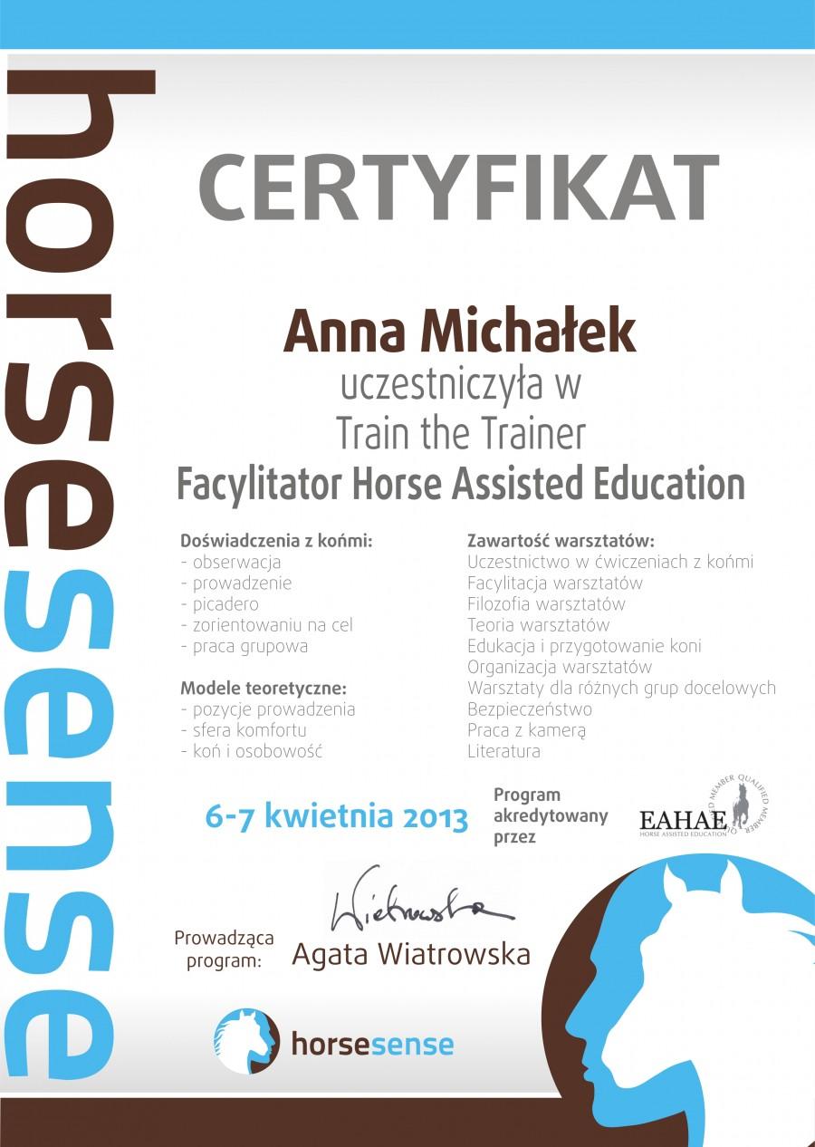 HS Certyfikat Anna Michałek